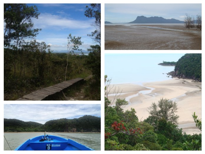 Take in the natural beauty of Bako National Park - it's truly a sight to behold.