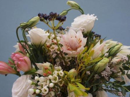 bloomroom1