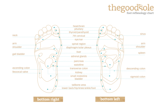 Different parts of the feet are said to correspond to different parts of the body.